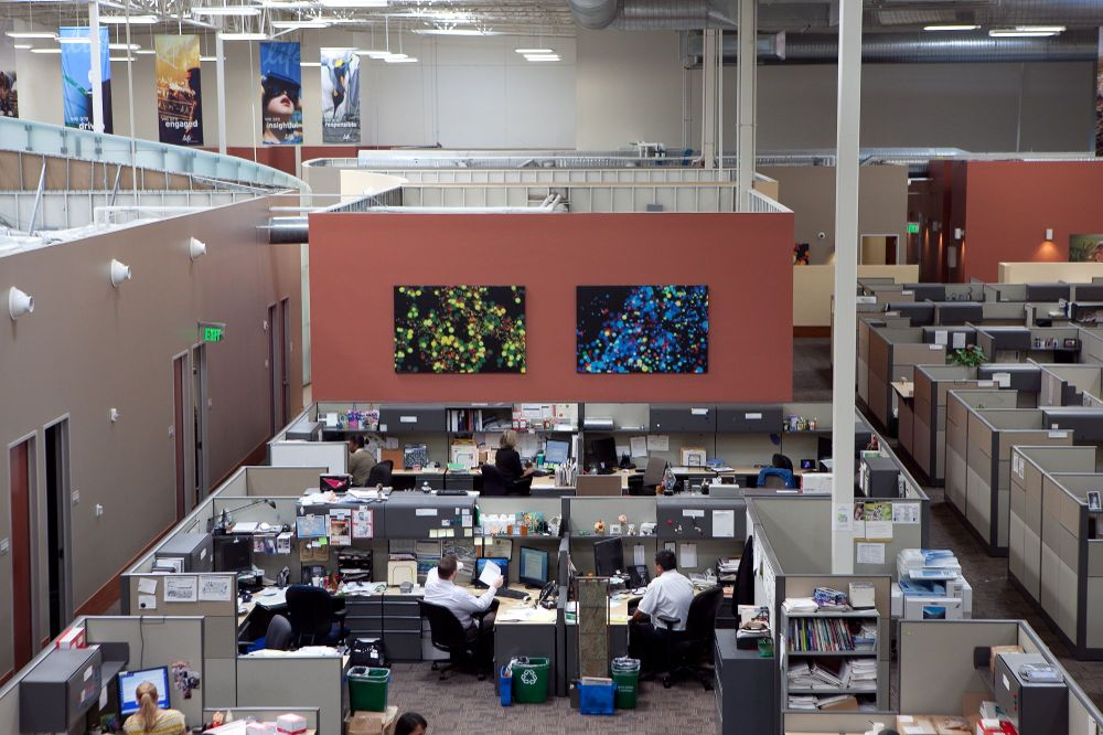 Absolutely Electric, Inc. - ThermoFisher Scientific - Interior Lighting Design, LED upgrades and lighting controls