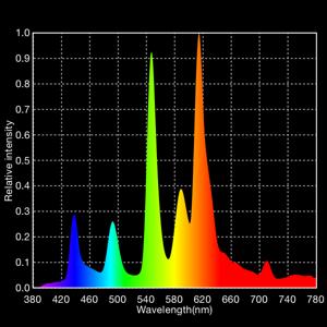 AE_SanCarlos_02-spectrum (2)